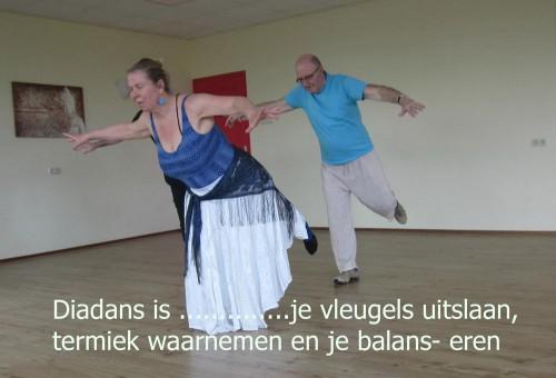 Stichting Beweegreden Diadans